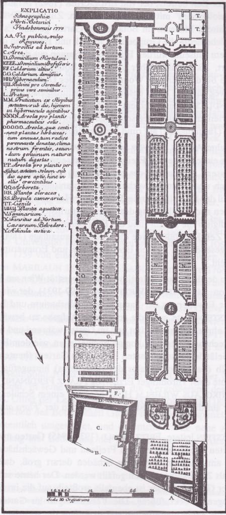 Plan des Botanischen Gartens im Jahre 1770. Joseph Franz Jacquin: Der Universitäts-Garten in Wien. Wien 1825.